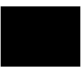 Pichoniza logo negro